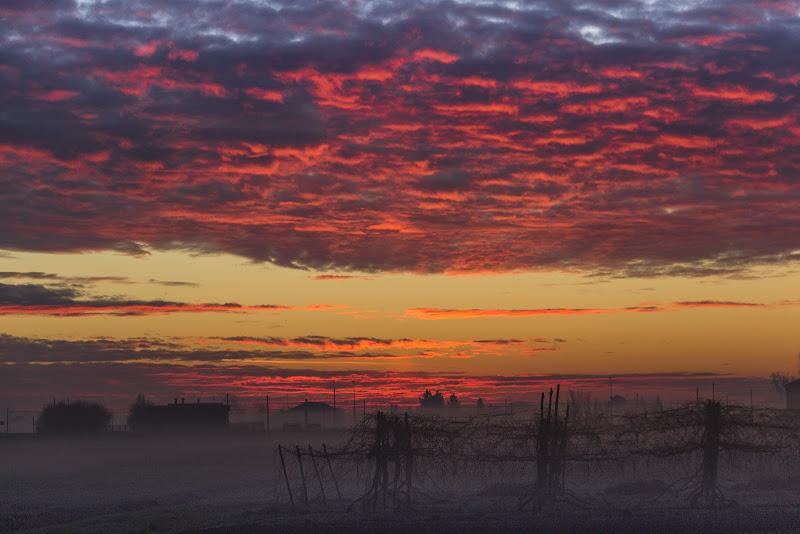 Luce nebbia all'alba di Sergej