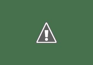 Photo: African elephant walking along a waterhole with Springboks, Etosha National Park, Namibia