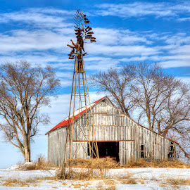 Timeless by Ken Smith - Buildings & Architecture Decaying & Abandoned ( barn, winter, rural nebraska, landscape )