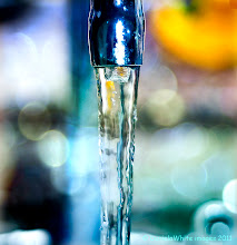 Photo: The essential element- water!