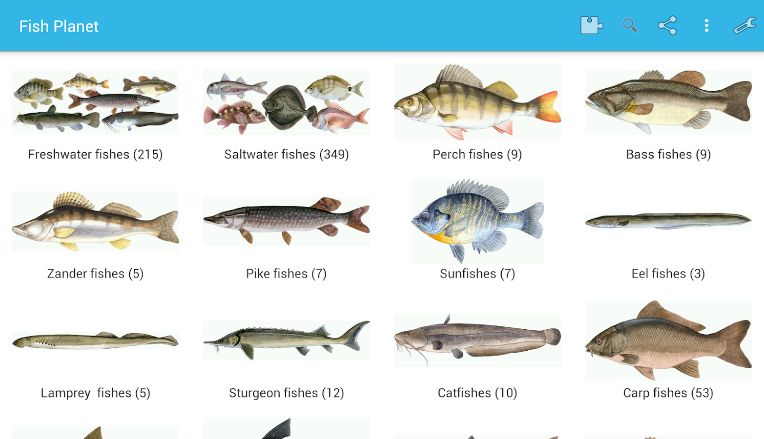 Fish planet android apps on google play for All fish names