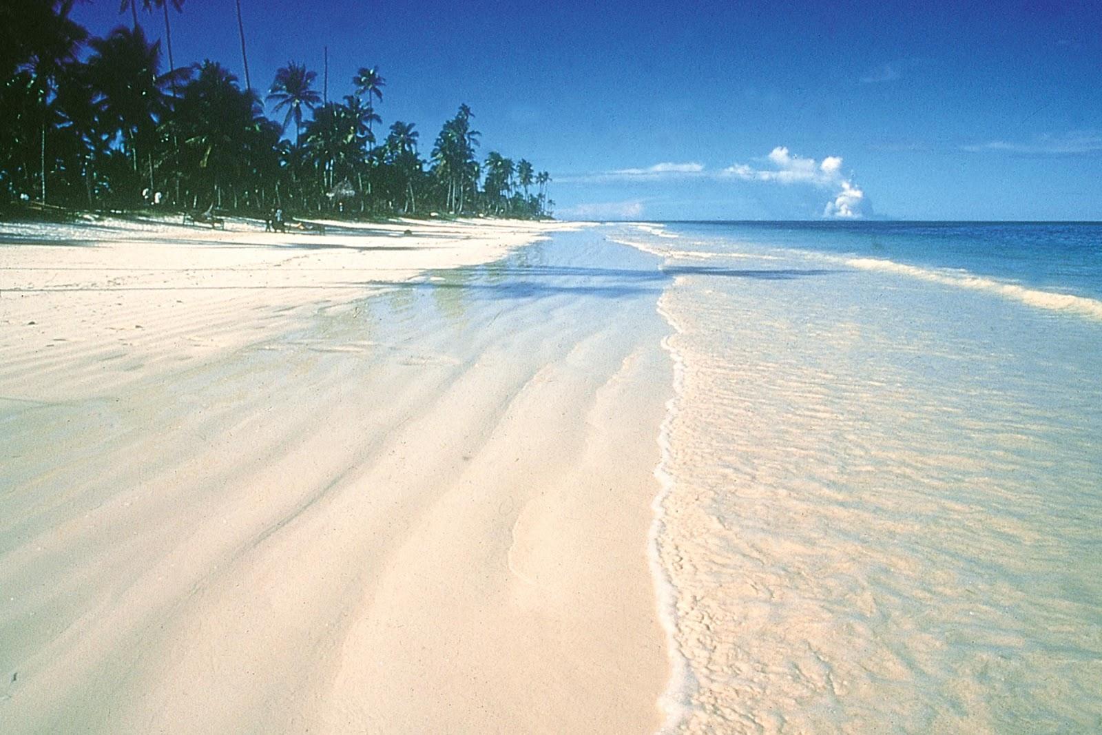 Achtergrondbeeld-Zanzibar.jpg