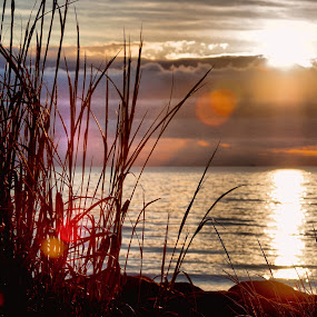 Sunrise on the Delaware Bay by Brian Lord - Landscapes Sunsets & Sunrises ( bay, sunset, delaware, sunrise, landscapes )