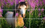 Puzzle - Beautiful Horses Apk Download Free for PC, smart TV