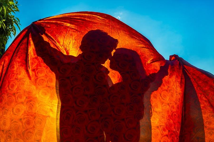 Wedding photographer Agustin Regidor (agustinregidor). Photo of 25.11.2016
