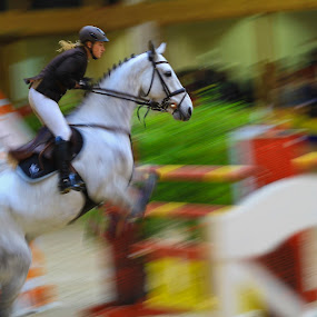 IMG 361 by Franc Brane Matko - Sports & Fitness Other Sports ( equestrian1 )