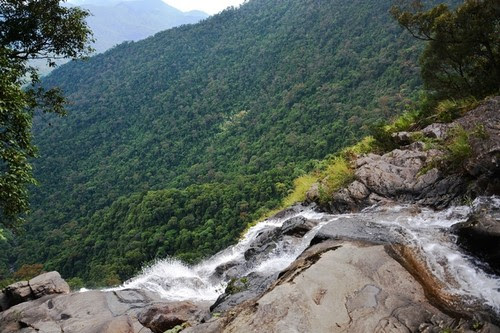 Vườn quốc gia Bạch Mã đẹp tựa tranh 6