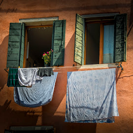 Windows by Heather Allen - Buildings & Architecture Homes ( venice, italy, washing,  )