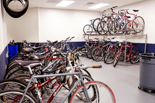 UI hosts annual bicycle census