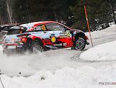 🎥 Rally van Zweden gaat mogelijk niet door wegens... te weinig sneeuw