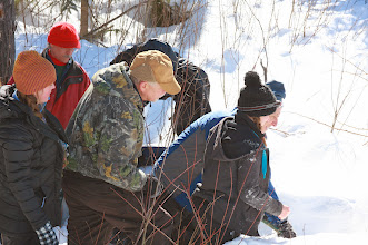 Photo: Wisconsin black bear research project team
