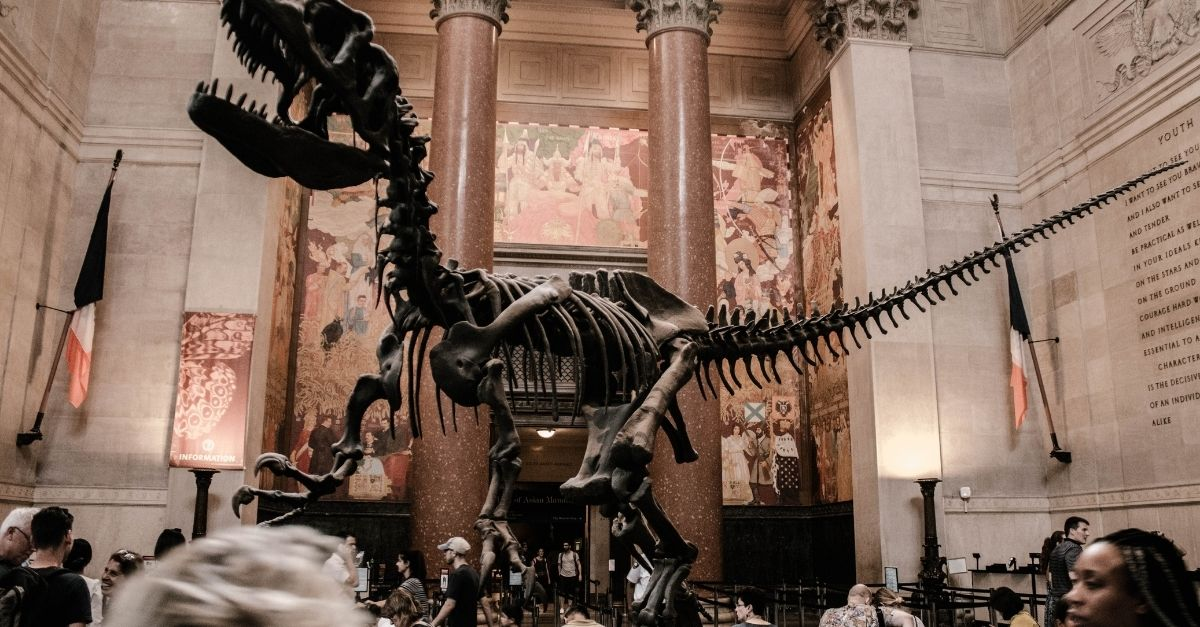 Visiting a museum is among the most popular things to do in New York during Christmas