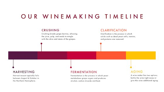 Our Winemaking Timeline - Presentation Template