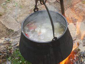 Photo: Zupa rybna - początek (10)