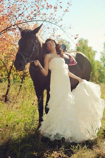 Wedding photographer Aleksandr Zaramenskikh (alexz). Photo of 27.11.2012