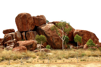 Photo: Year 2 Day 217 - Rocks and Gums at The Devil's Marbles