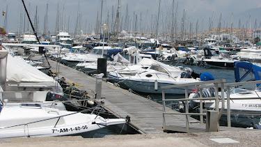 Puerto Deportivo de Almerimar de gestión privada, el más grande de la provincia.