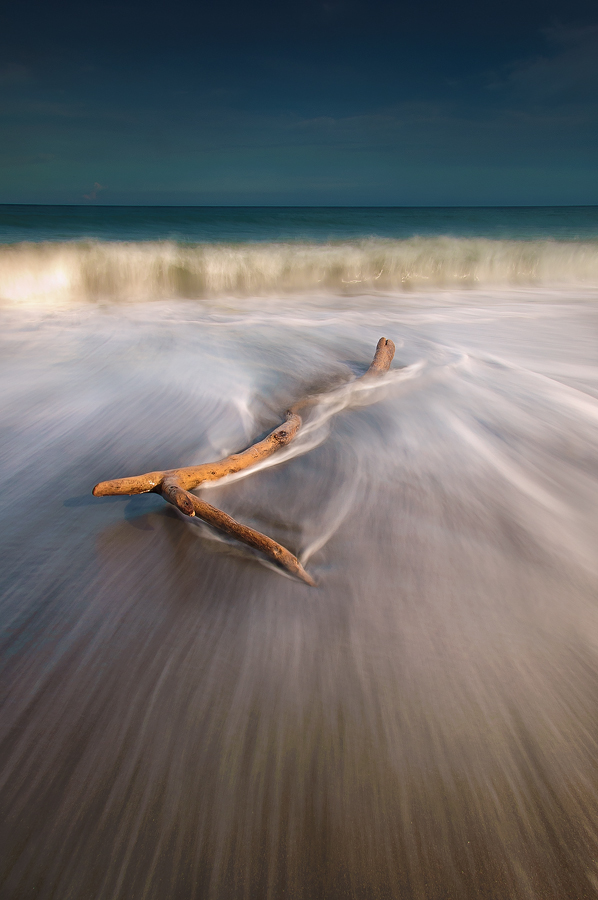 a driftwood's life by Ledon Jasper Samoranos - Landscapes Waterscapes