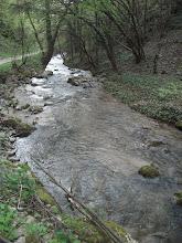 Photo: Vitovnička reka
