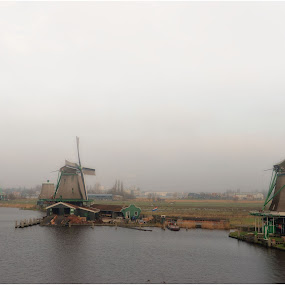 Windmills by Darko Žgela - Buildings & Architecture Public & Historical ( history, fog, landscape, windmills, netherlands,  )