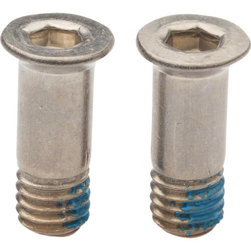Campagnolo Rear Derailleur Pulley Bolt Set for CE/VE/ME/XE and TR