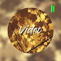 Autumn Video Wallpapers icon