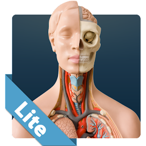 Anatomy Game Anatomicus Lite for PC and MAC