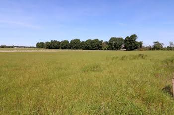 terrain à Saint-Mards-de-Blacarville (27)
