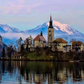 Bled island by Stane Gortnar - City,  Street & Park  Historic Districts ( winter., church, slovenia, bled, island )