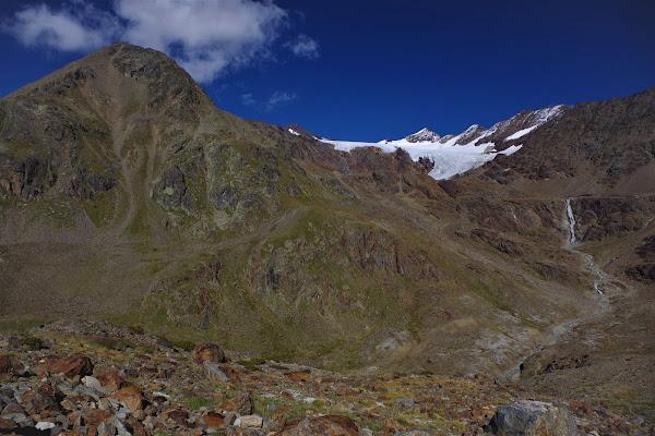 L'esiguo e prezioso verde delle alte cime di nestowolf