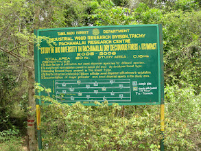 Photo: forest dept project for biodiversity.