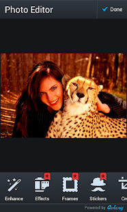 tygří fotorámečky - náhled
