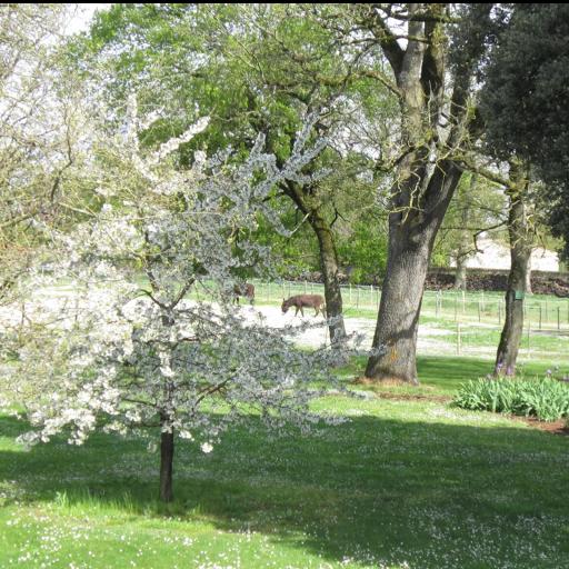 Clos de la Garenne Guest house parkland