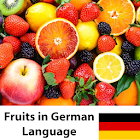 Learn Fruits in German icon