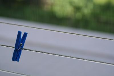 Pinza blu di ivanbonsi