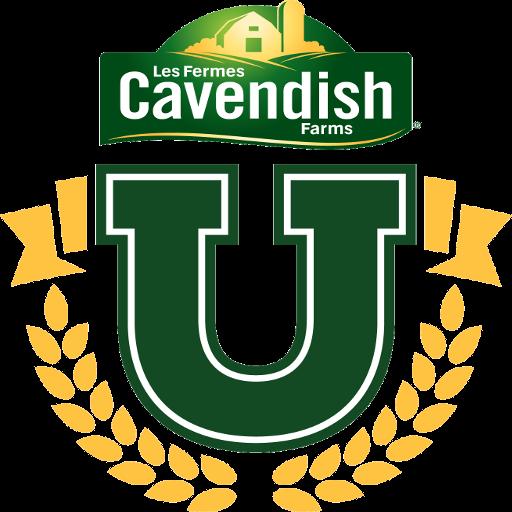 Cavendish beach music festival 2012 dates