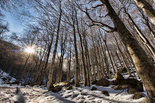 Sbucano i raggi del sole sopra la montagna... di Gianluca Presto