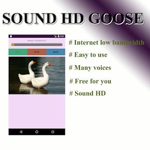 Goose voice - náhled
