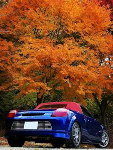 MR-S  GH-ZZW30  2000年式 5MT  Sエディションのカスタム事例画像 Fukui★Norisukeさんの2018年11月12日20:43の投稿