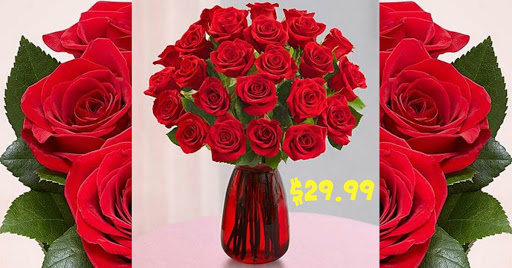 1-800-Flowers: $29.99 TWO Doze...