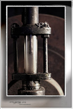 Foto: 2011 04 27 - R 08 08 29 058 c - P 121 - Wasserstand