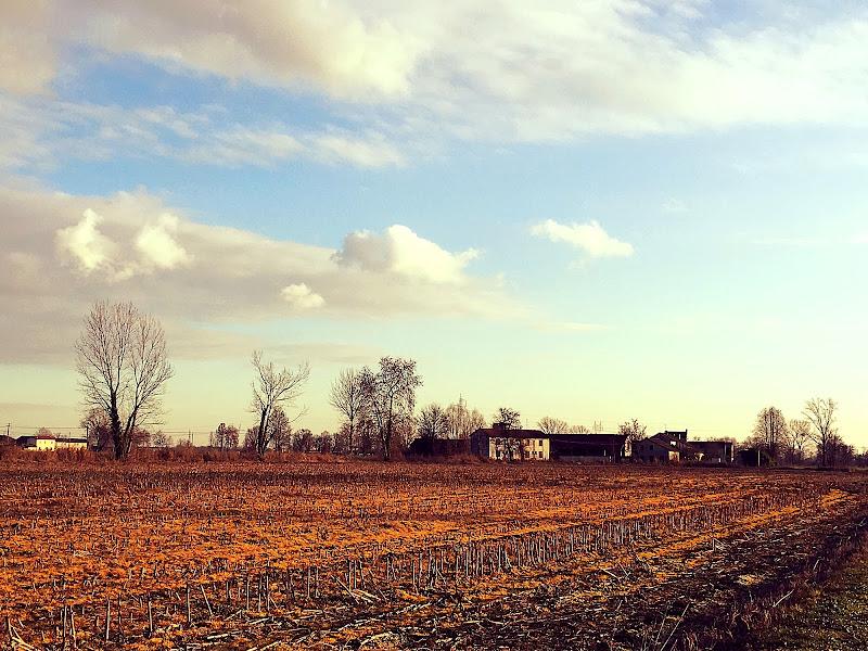 I colori dell'inverno di Danisc80