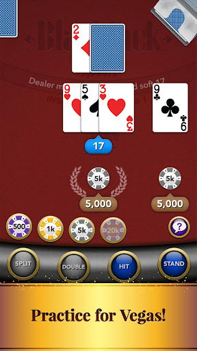 Blackjack Card Game screenshot 7