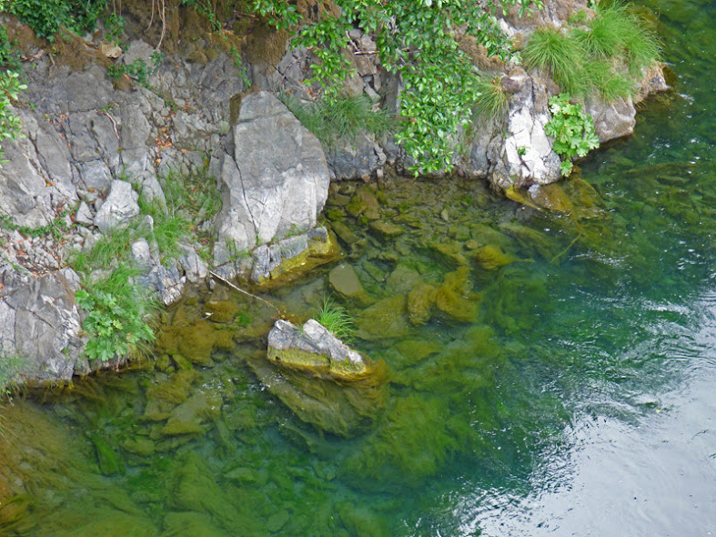 Chetco River 1.5 miles above Loeb State Park