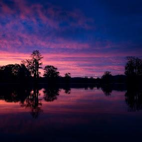 Sunrise over Gantt Lake, AL by Beth Ann - Landscapes Sunsets & Sunrises ( blue, trees, pink, lake, sunrise )