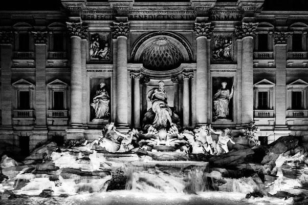 Fontana di Trevi e la sua imponenza di SLR Photo