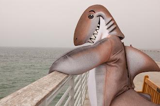Photo: Dusky on the Hermosa Beach Pier. Credit: Chris Panagakis