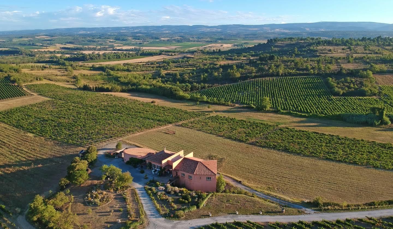 Vignoble Carcassonne