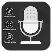 Video Voice Dubbing Editor