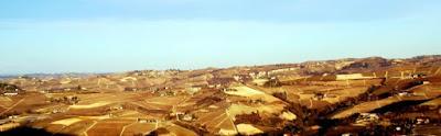 Le terre del vino.CN di klaF